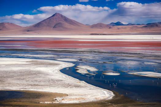 Red Lagoon