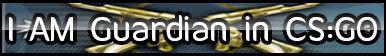 CS:GO AK ( Guardian + Guardian Master ) Button .