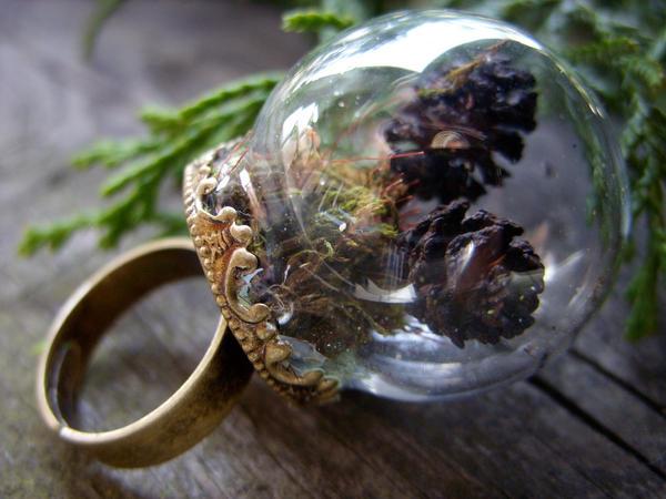 mini terrarium ring by kickthebucket