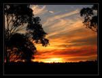 Australian Sunset by eswanson