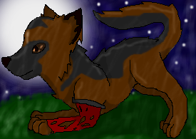 German Wolf by BloodyWolf17