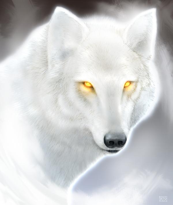 the boreal king winter wolf by dloliver on deviantart. Black Bedroom Furniture Sets. Home Design Ideas