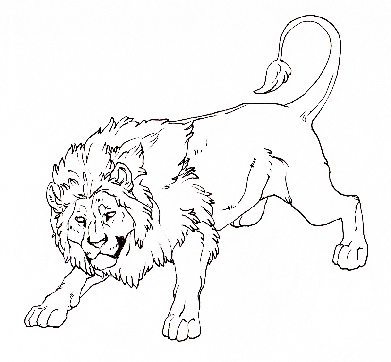 Line Drawing Of Lion : Lion lineart by hire me on deviantart
