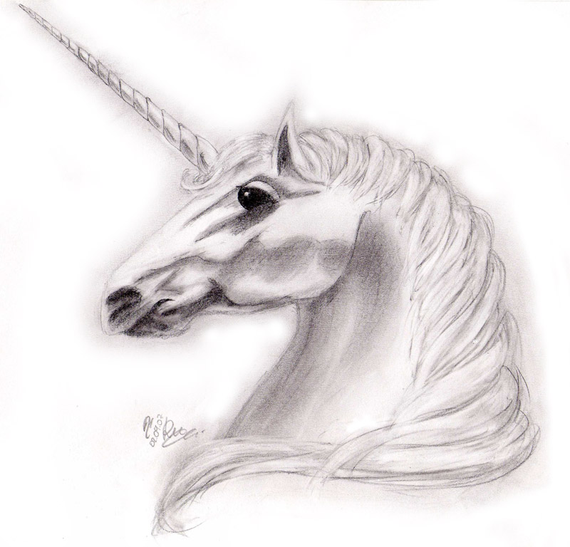 Unicorn's head by Ricchin on DeviantArt