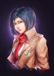 Mikasa Collab