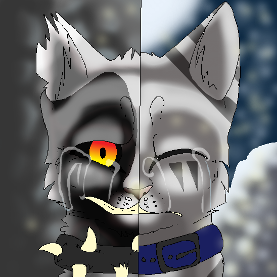 Two Sides Of The Same Coin by Luna101lol