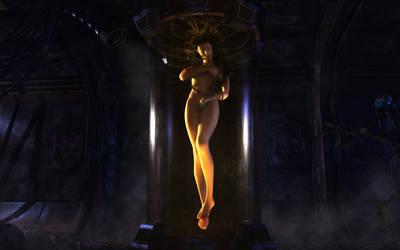 Rebirth of the Venus