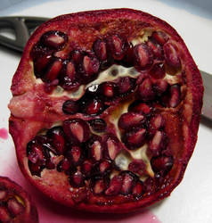 748 - pomegranate by WolfC-Stock