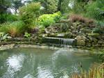 247 - garden