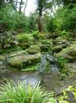 249 - garden