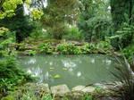 251 - garden