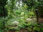 252 - garden