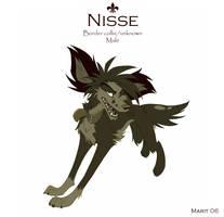 Nisse Sheet