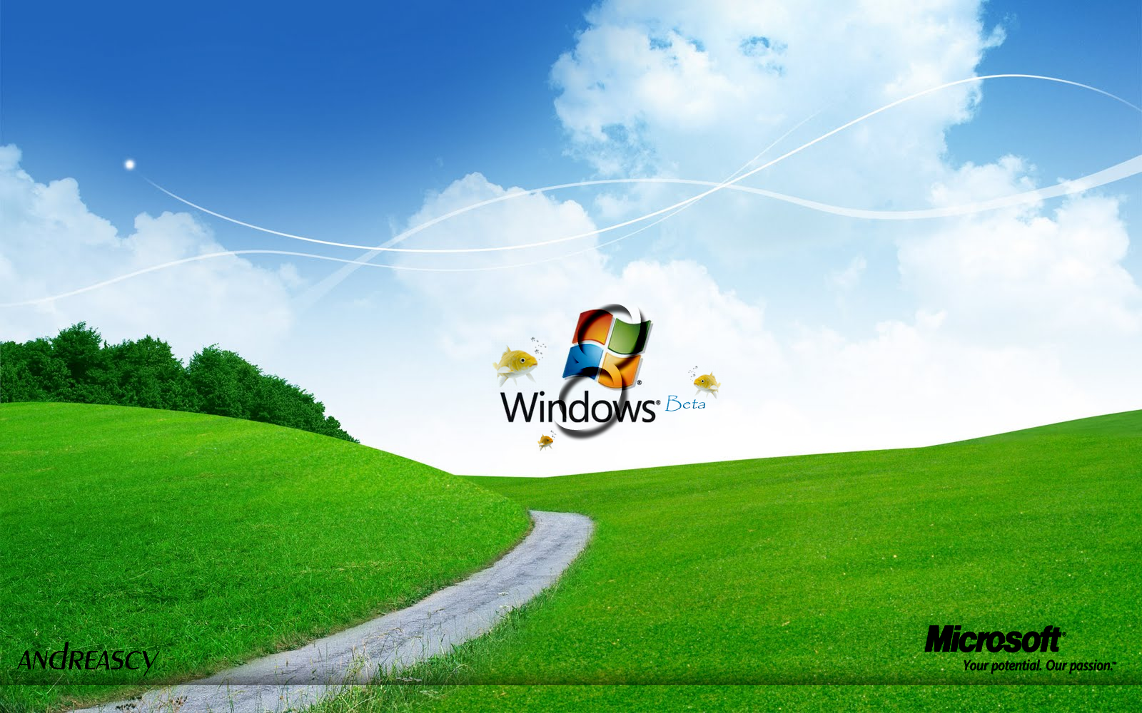 Windows 8 Beta by andreascy