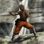 Shaolin Monk by Djake