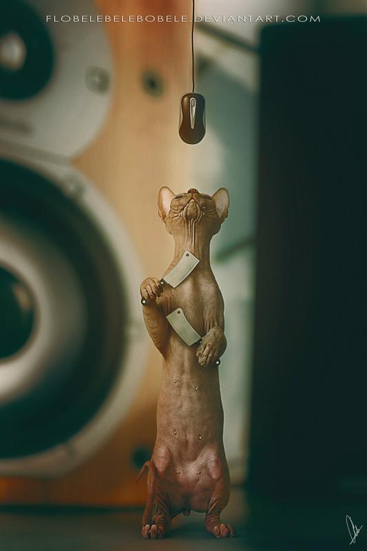 Cat Trap by Flobelebelebobele