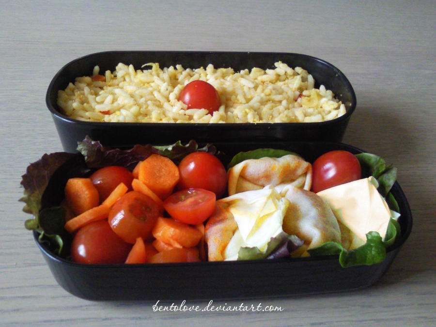 chicken gyoza bento by BentoLove