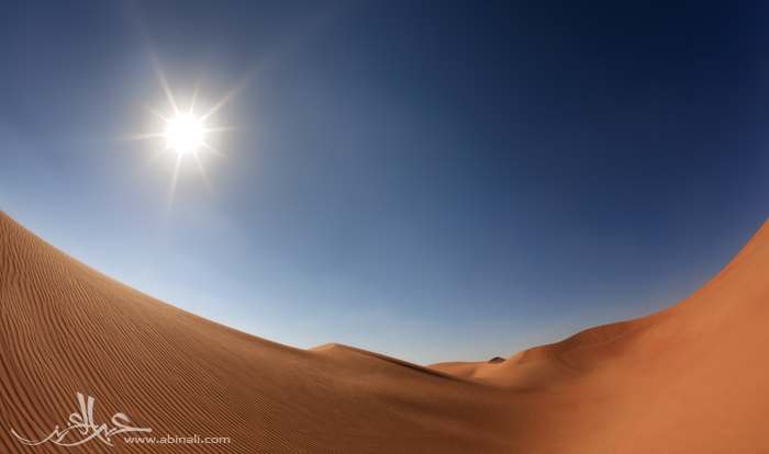beauty of desert by abinali