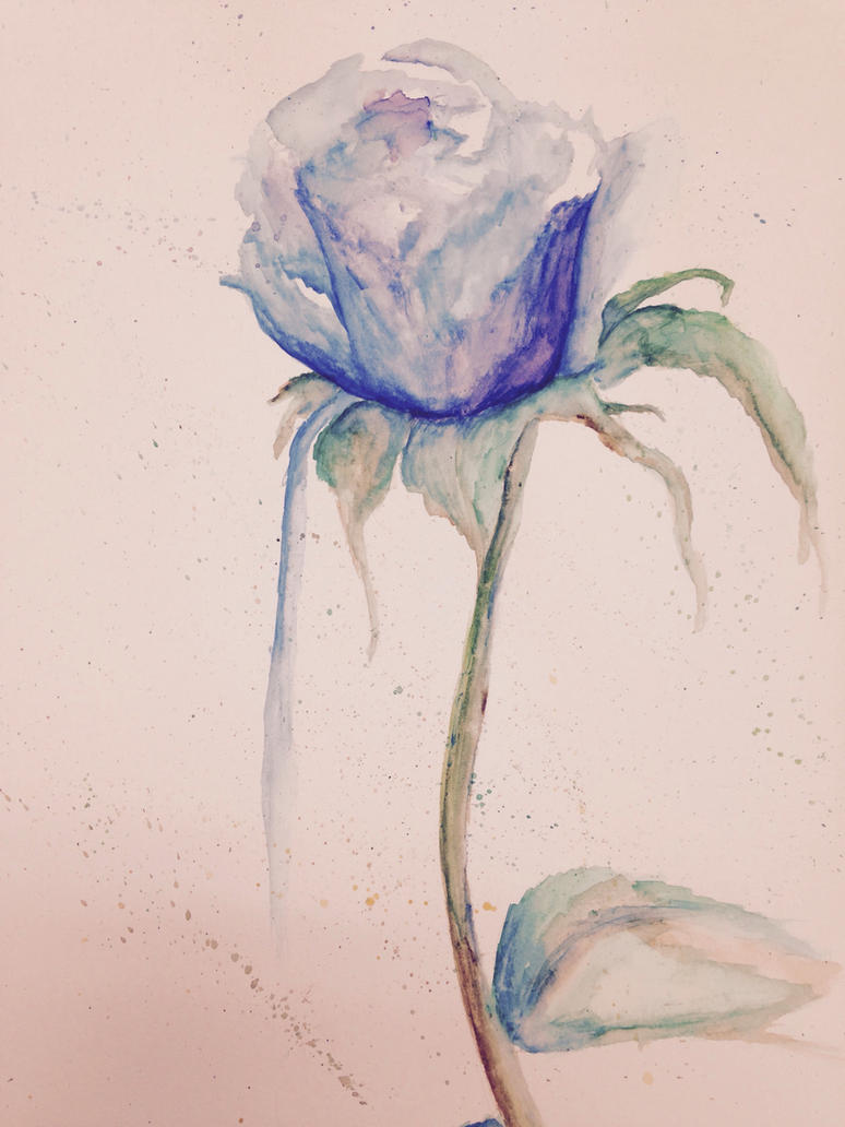 Blue rose by Night-Rader