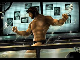 Wolverine - Weapon X by Shafcrawler