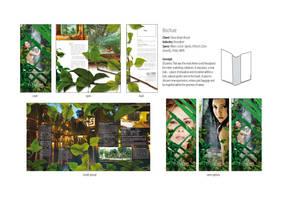 Siloso company brochure by sunderland7