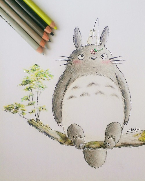 Totoro by thegreatperhapss