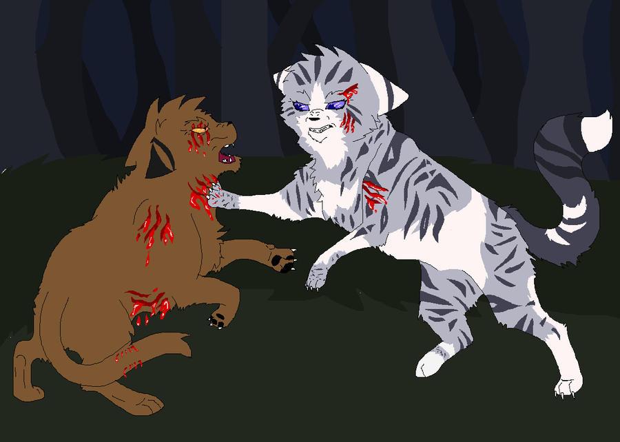 Cats Kits