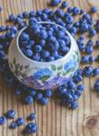 bluecrop by Tiroko