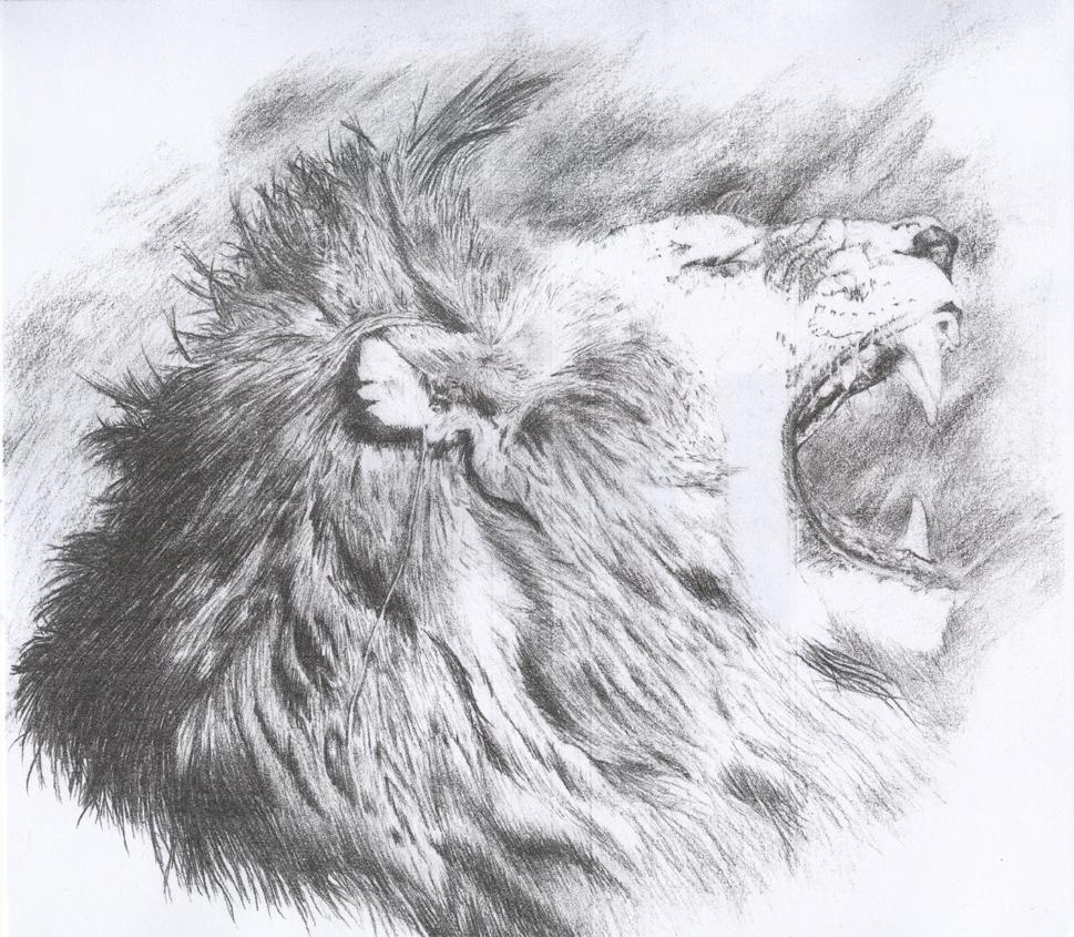 Roaring Lion by midnightlight on DeviantArt