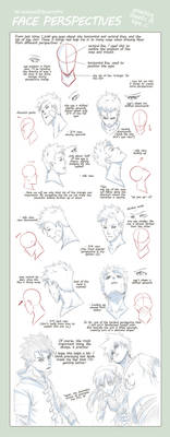 TIPS: Head n Face Perspectives