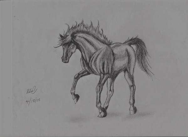 HD wallpapers how to draw a horse