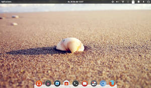 notebook elementary desktop