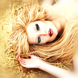 Glamour Grass
