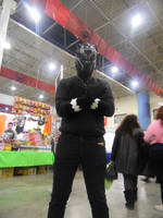Black Panther Cosplay 03. by brandonale