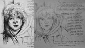 It's Like in the Great Stories, Mr. Frodo.. by JuliaFox90