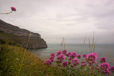 Great Orme by friartuck40