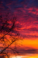 Burning sky by OodiEtAmo