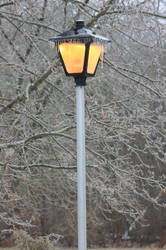 12-19 3644 Lamp post with ice