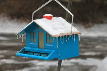 12-19 3649 Frosted bird feeder