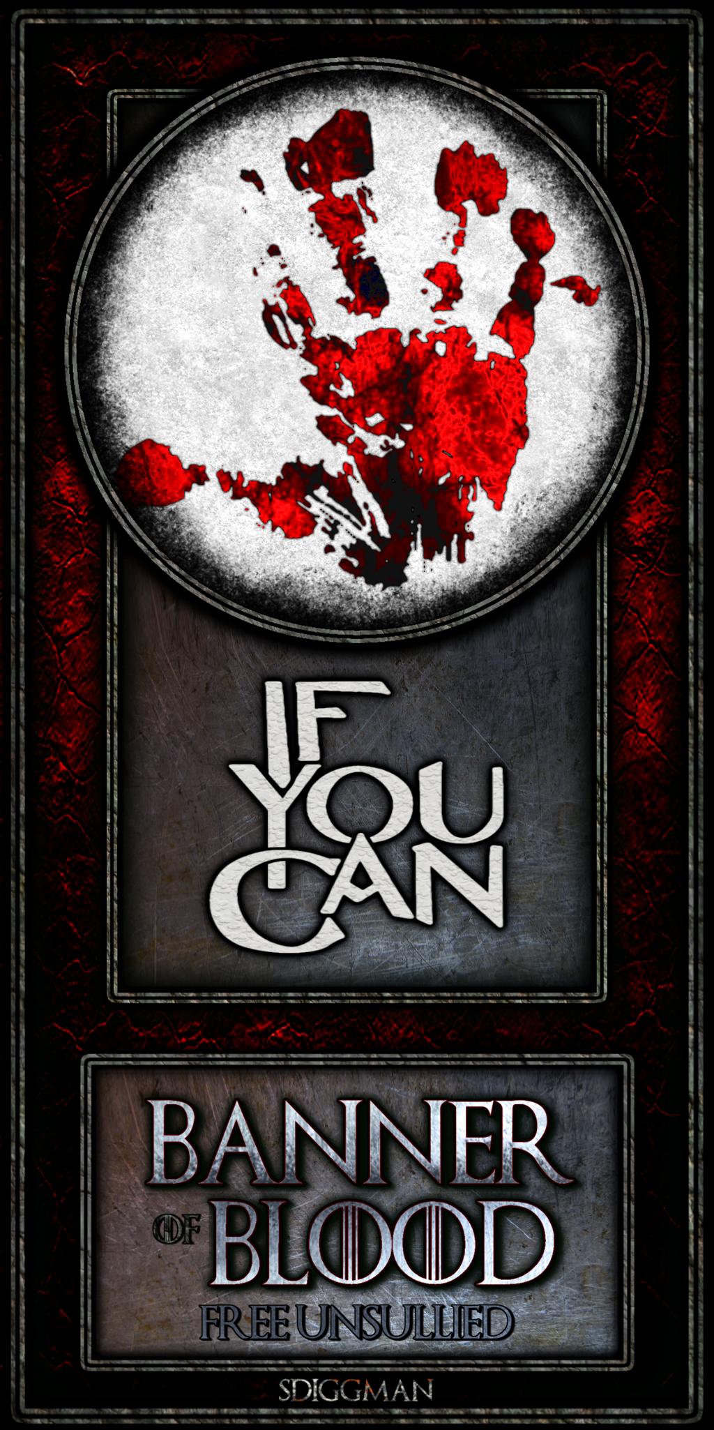 Bloodbannerifyoucan (1) by sdiggman