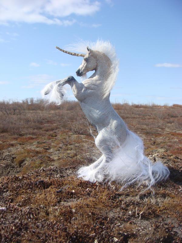 fleabitten gray unicorn by Ethereal-Beings