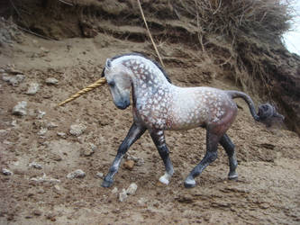 _Andalusian Unicorn_ by Ethereal-Beings