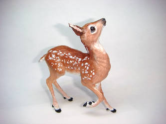 Deer Fawn by Ethereal-Beings