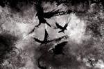 'Corvus Corax'