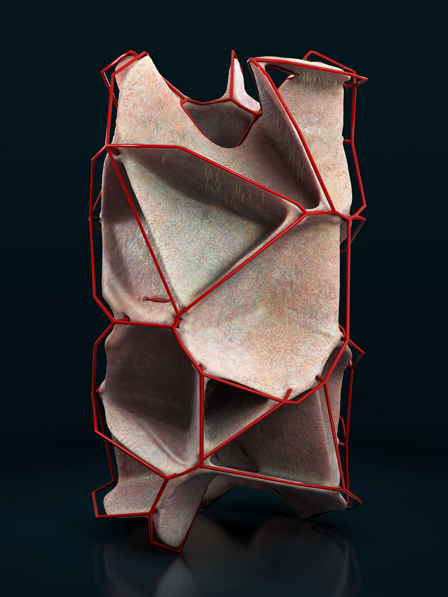 Hypatia - Generative Form