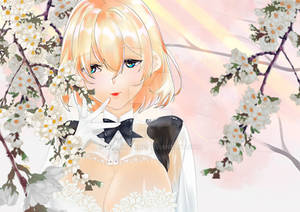 Hanami Dream