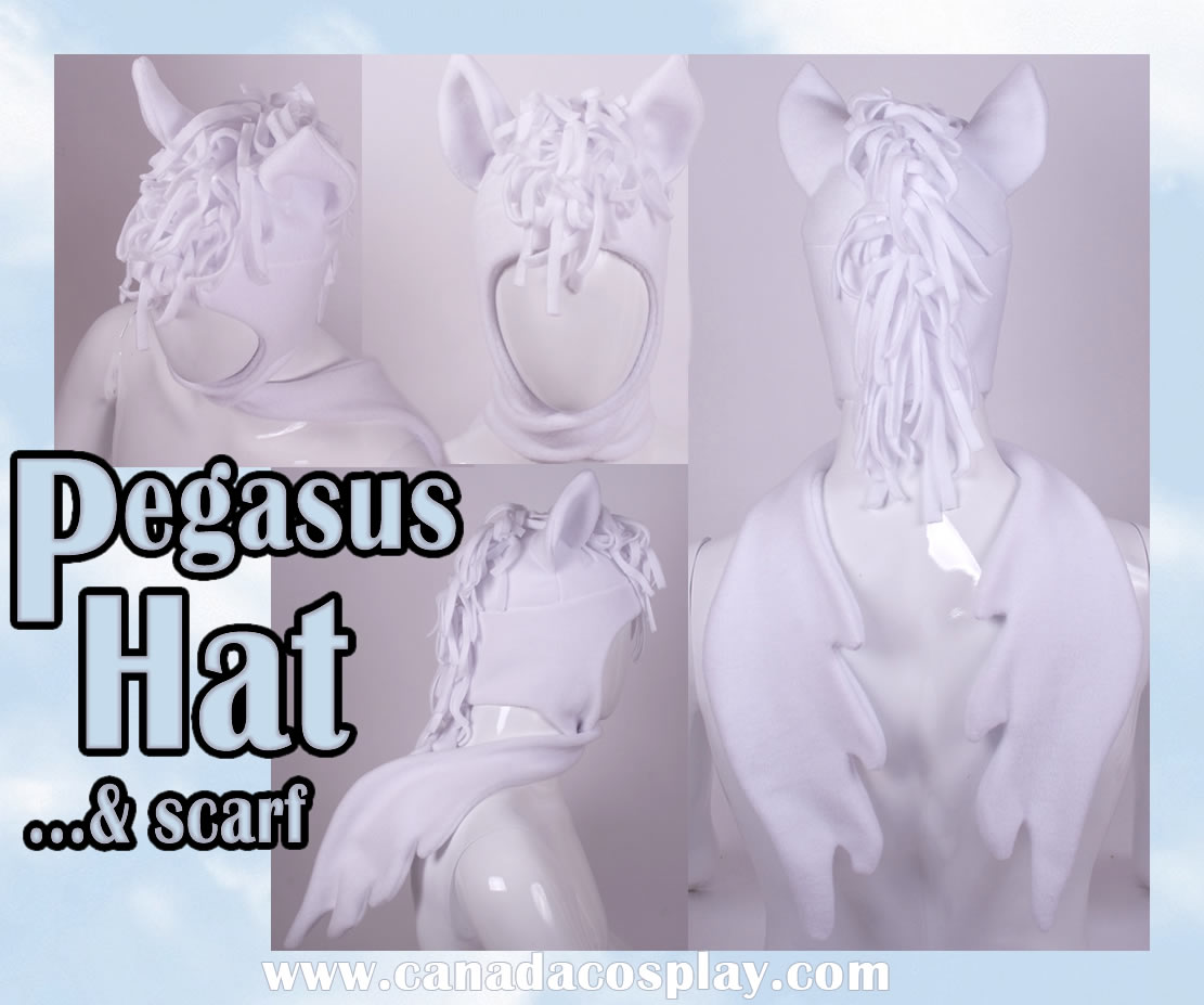 Pegasus Hat and Scarf WINNER by calgarycosplay