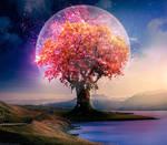Tree Of Wonder - Photoshop Art