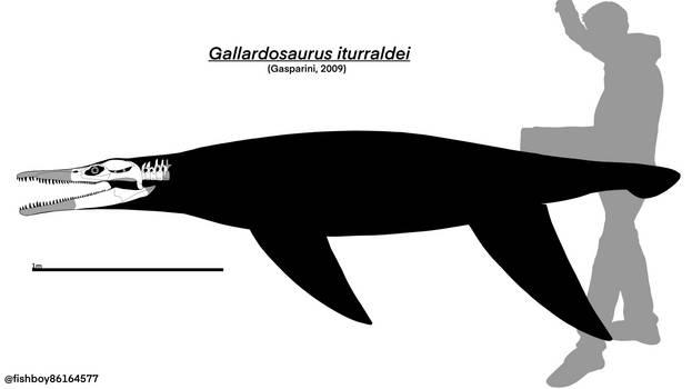 Gallardosaurus skeletal