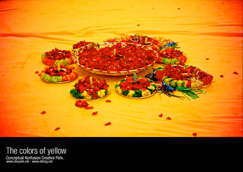 The colors of yellow